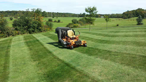 Saratoga Springs Clifton Park Albany Lawn Care Landscaping Service Winnie